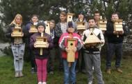 Projekt Vtáčie búdky